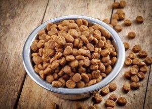 Сухие корма для домашних животных