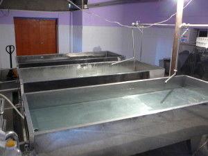 Ванна охлаждения для сыра