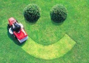 Укорачивать траву нужно равномерно