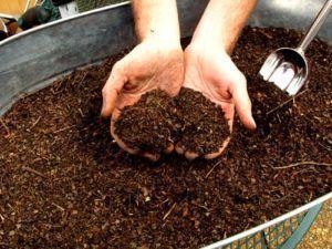 Торфяной компост
