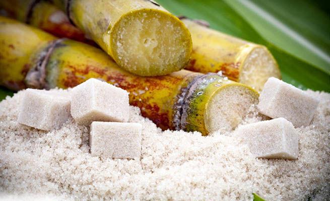 Тростниковый сахар используется в качестве сырья