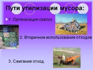 Пути утилизации мусора