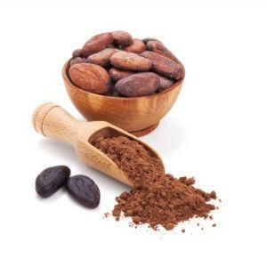 Порошок из какао бобов