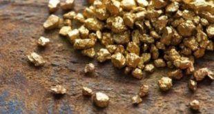 золотодобыча россии