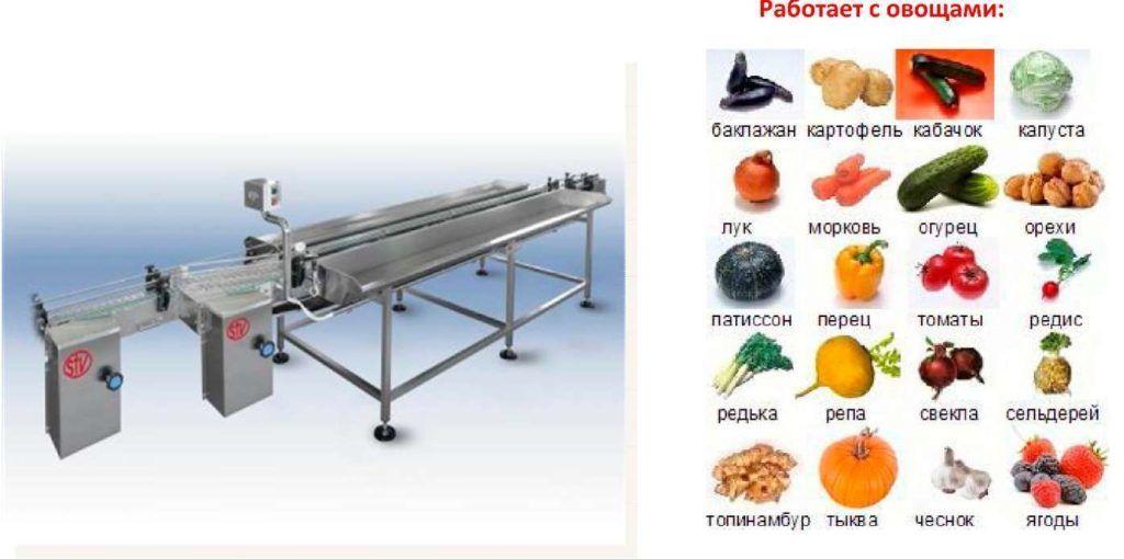 Линия для производства консервов из овощей