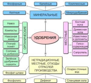 Схема классификации удобрений