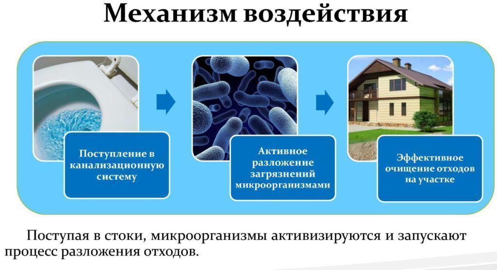 Принцип работы биологических средств для чистки биотуалетов